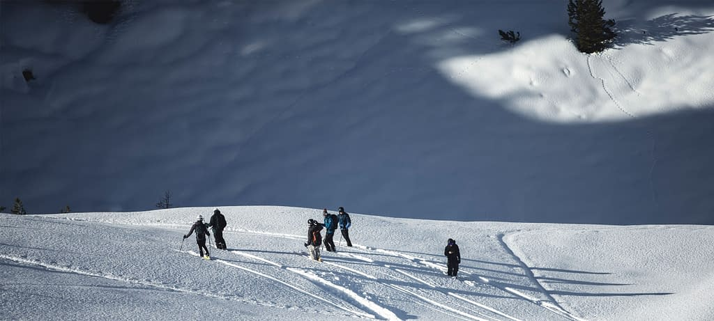 Innsbruck Freeride Experience Snowmads Group Skitouring Search